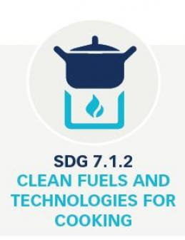 7.1.2 Clean Fuels and Technologies for Cooking Dataset